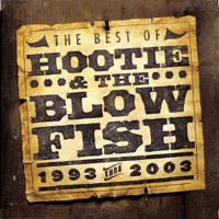 Hootie & The Blowfish - Only Wanna Be With You artwork