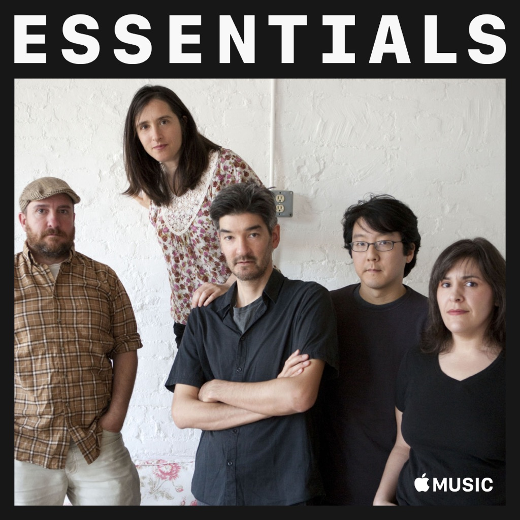 The Magnetic Fields Essentials
