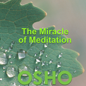 The Miracle of Meditation - EP