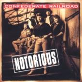 Confederate Railroad - I Am Just a Rebel
