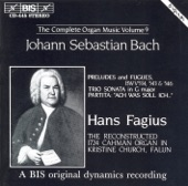 Hans Fagius - BWV 546 Praeludium in C minor