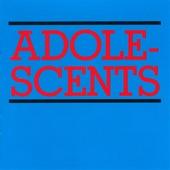 Adolescents - Democracy