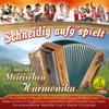 Schneidig aufg'spielt mit der steirischen Harmonika - Various Artists