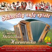 Schneidig aufg'spielt mit der steirischen Harmonika - Various Artists - Various Artists