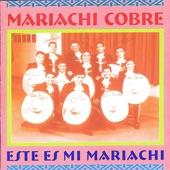 Mariachi Cobre - Popurri Javier Solis