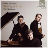 Piano Trio No. 2, Op. 100, D. 929: II. Andante con Moto Trio Wanderer