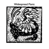 Widespread Panic - Makes Sense To Me