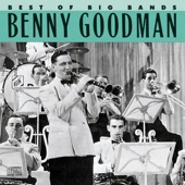 Benny Goodman & His Orchestra - Somebody Stole My Gal