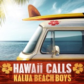 The Kalua Beach Boys - Hawaiian Surf