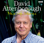 Charnia - David Attenborough's New Life Stories (Episode 3, Series 2)