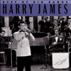 It's Been a Long, Long Time - Harry James and His Orchestra