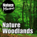 Nature Music - Nature Woodlands (Nature Sound With Music)