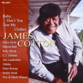 James Cotton - Stealin' Stealin'