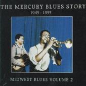 Andrew Tibbs - Leap Year Blues