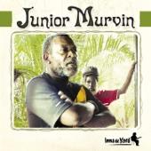 Junior Murvin - Police & Thieves