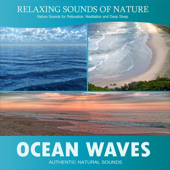 Ocean Waves (Relaxing Sounds of Nature) - EP