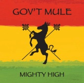 Gov't Mule - The Shape I'm In
