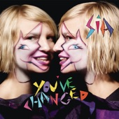 You've Changed - Single