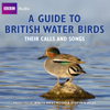 Stephen Moss - A Guide to British Water Birds: Their Calls and Songs portada