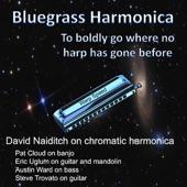David Naiditch - Katie Hill (feat. Pat Cloud)