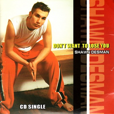 Don't Want to Lose You - Shawn Desman