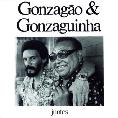 Juntos: Luiz Gonzaga & Gonzaguinha - Luiz Gonzaga
