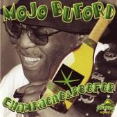 Mojo Buford - Long Distance Call