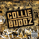 Come Around - Collie Buddz