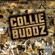 Collie Buddz Come Around - Collie Buddz