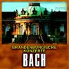 "Brandenburg Concerto No.4 in G major, BWV 1049 : I. Allegro - St. Petersburg Orchestra ""Opera"""