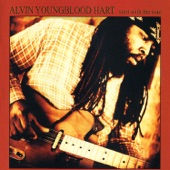 Alvin Youngblood Hart - Fightin' Hard