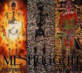 Meshuggah - Soul Burn