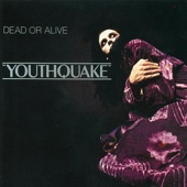 Dead or Alive - You Spin Me 'Round (Like a Record)