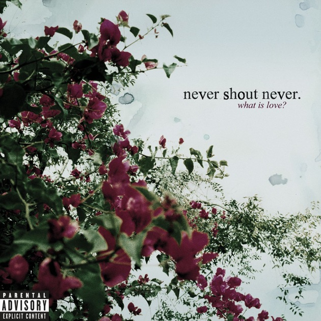 What Is Love Bonus Track Version By Never Shout Never On Apple Music