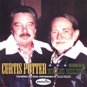 Curtis Potter - Healing Hands Of Time