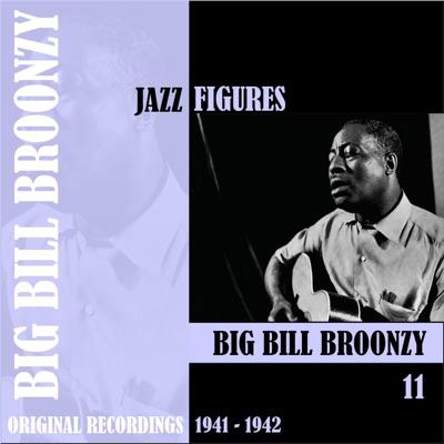 Jazz Figures: Big Bill Broonzy, Vol. 11 (1941-1942) - Big Bill Broonzy