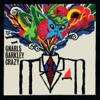 Gnarls Barkley - Crazy kunstwerk