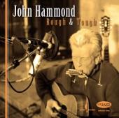 John Hammond - No Place to Go