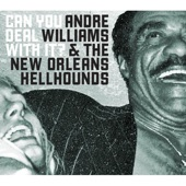 Andre Williams & The New Orleans Hellhounds - Never Had a Problem