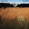 White Lion - Radar Love ilustración
