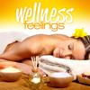 Wellness Feelings - Various Artists