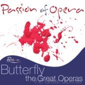 Compagnia D'Opera Italiana - Madama Butterfly: Ora a noi. Sedete quì.