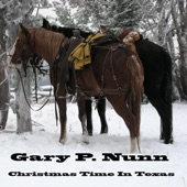 Gary P. Nunn - Pretty Paper