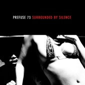 Prefuse 73 - Expressing Views Is Obviously Illegal