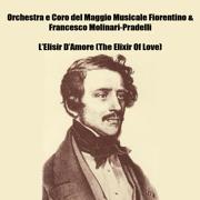 L'Elisir D'Amore (The Elixir Of Love) - Orchestra E Coro Del Maggio Musicale Fiorentino & Francesco Molinari-Pradelli - Orchestra E Coro Del Maggio Musicale Fiorentino & Francesco Molinari-Pradelli