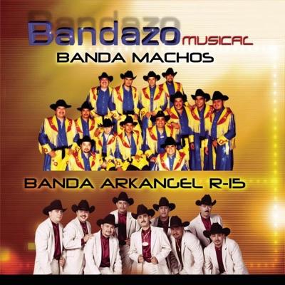 Bandazo Músical - Banda Machos