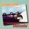 Sneaky Pete & Cool Cats - It's Only Make Believe artwork