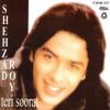 Shehzad Roy - Teri Soorat artwork