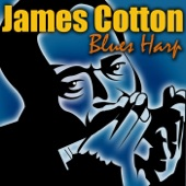 James Cotton - You Know It Ain't Right