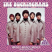 THE BUCKINGHAMS - Hey Baby (They're Playing Our Song)